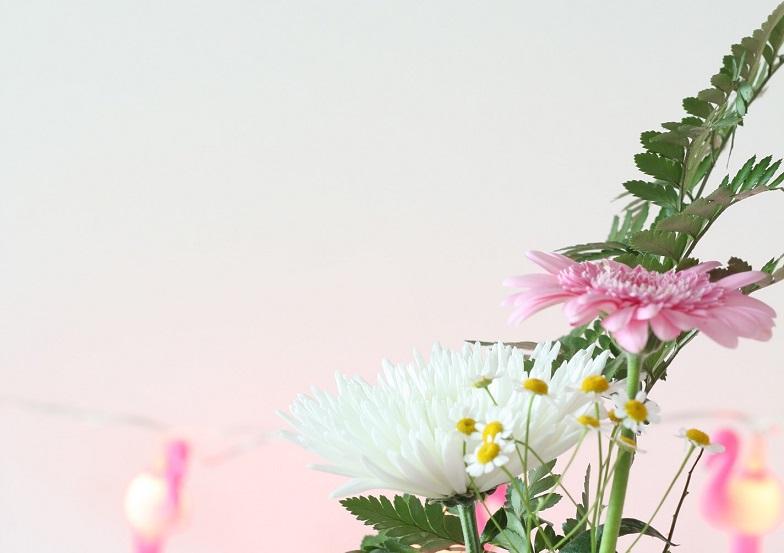 bloemen close up