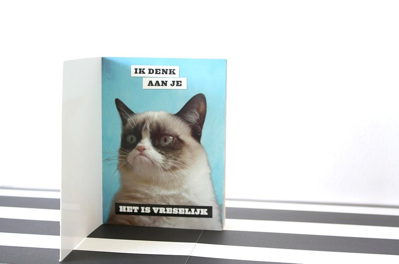 grumpy cat kaarten