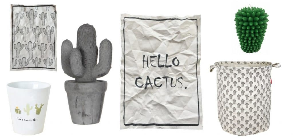 cactus interieur items