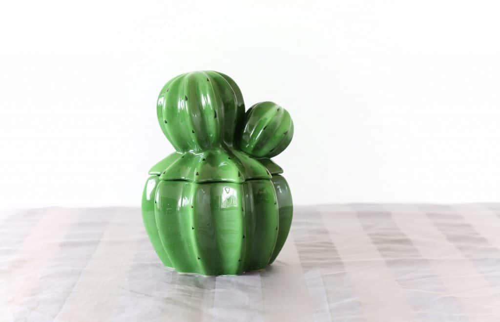 Cactus voorraad pot