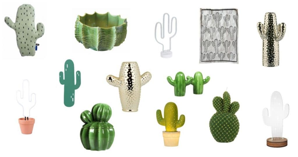 cactus decoratie