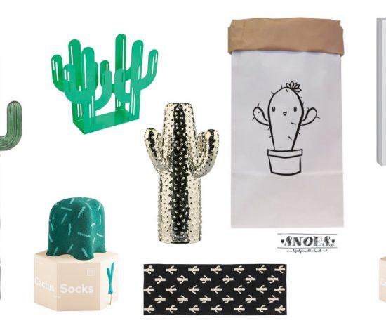 Cactus accessoires