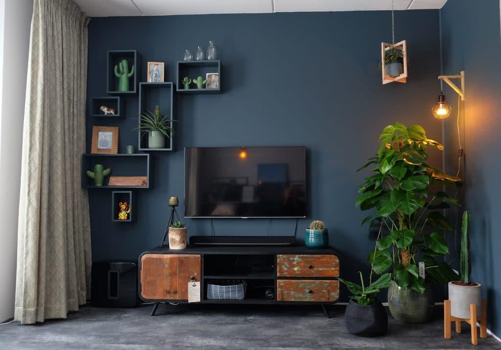 Industriële tv kast en veel planten. Onze woonkamer. - ZoSammieEnzo