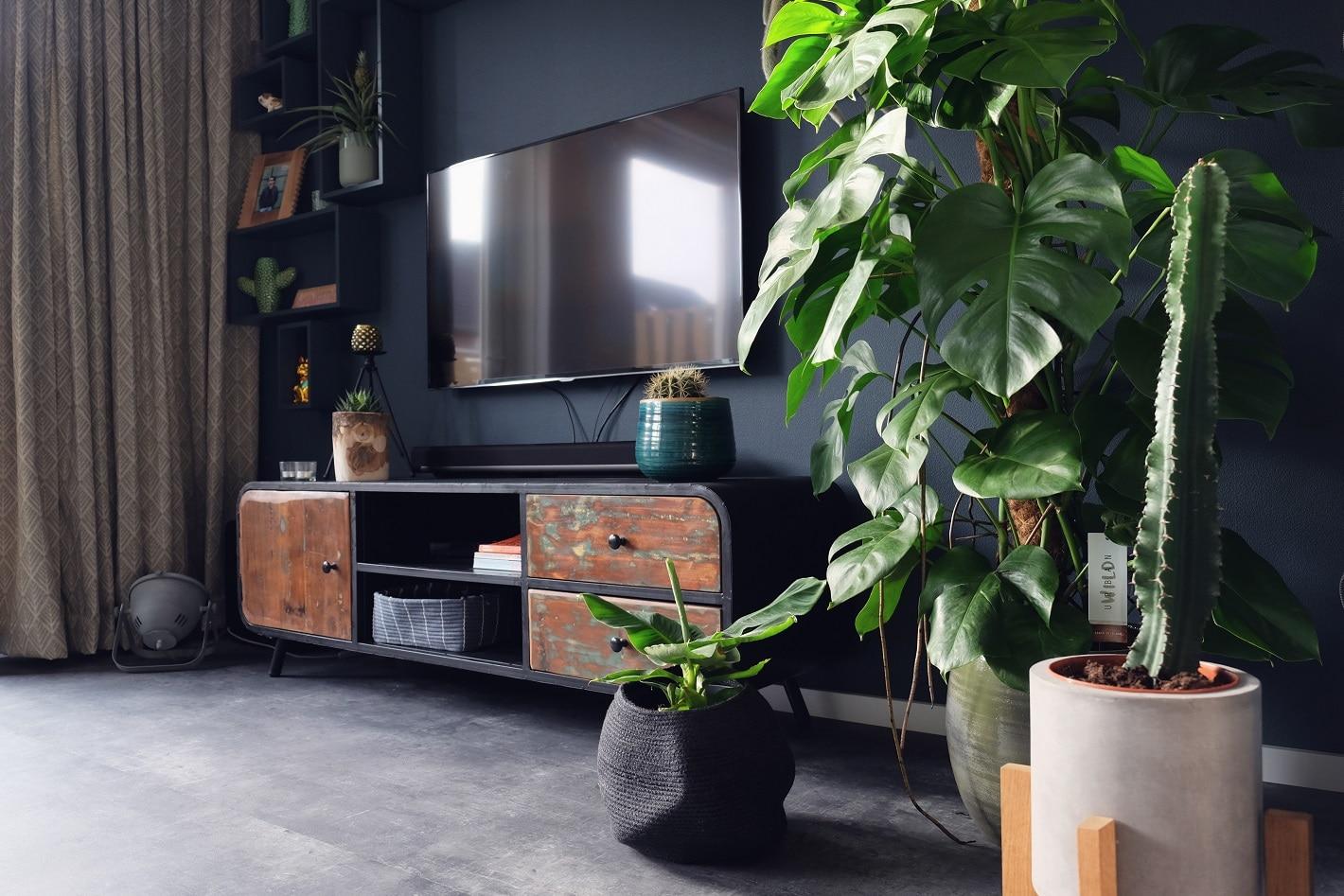 Botanisch interieur, veel planten en veel groen! - ZoSammieEnzo