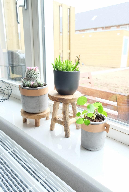 betonnen planten pot