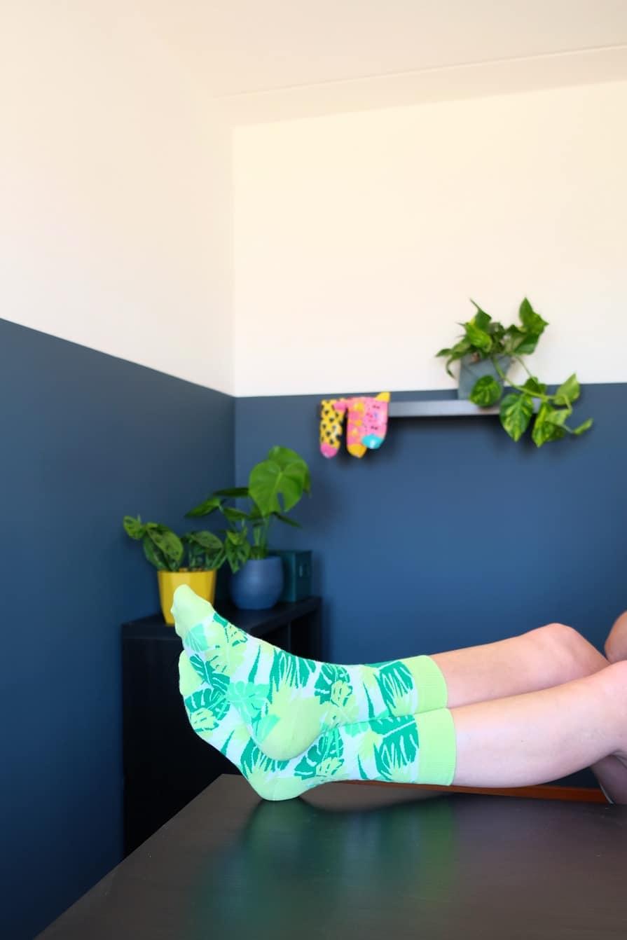 monstera socks