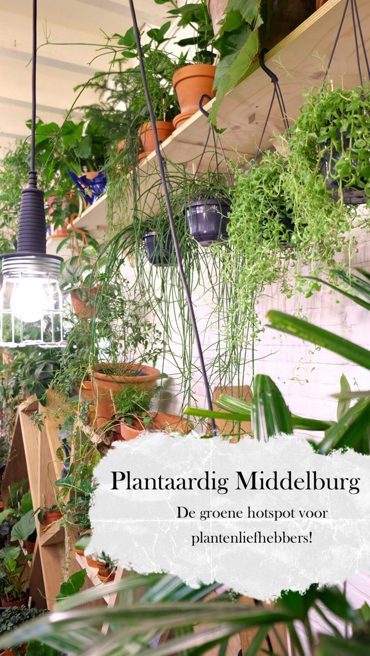 Plantaardig Middelburg