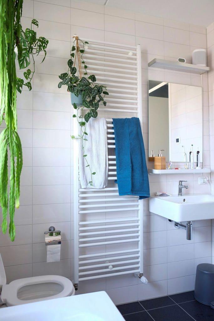 planten op de badkamer