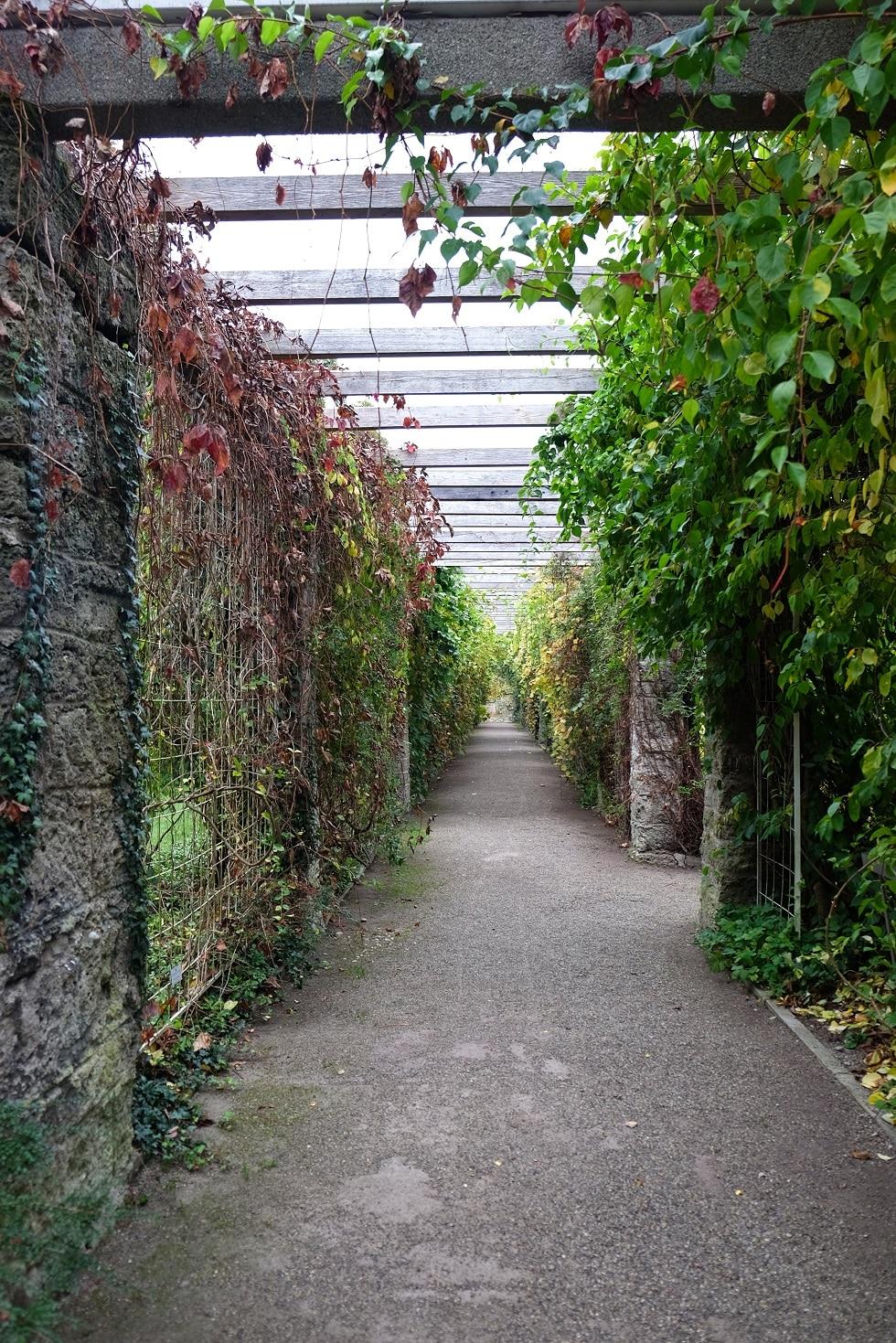 Botanische tuin München