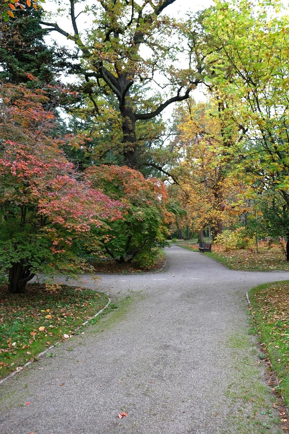 Botanische tuin Munchen