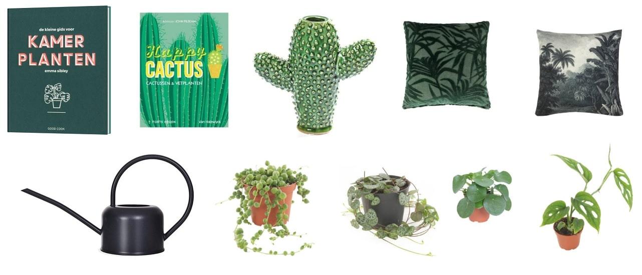 cadeau plantenliefhebber