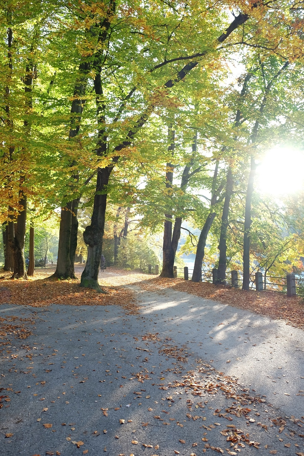 munchen park