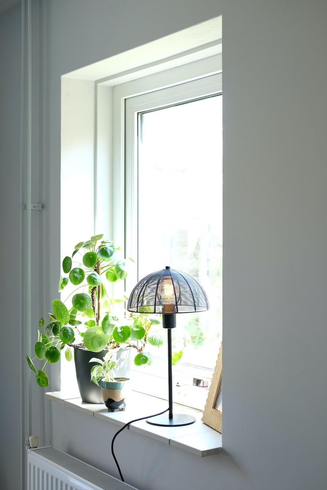 sohome lamp